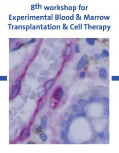 Experimentelle Stammzelltransplantation Robert Zeiser Andreas Beilhack Freiburg stem cell transplantation cell therapy